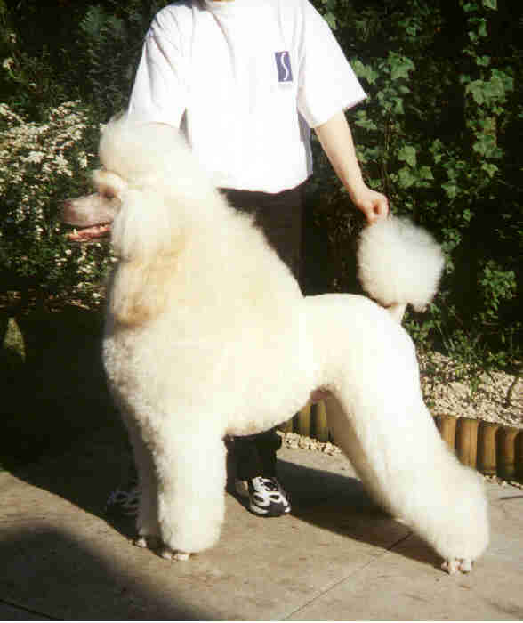 Sukanto Ell-Uva-Guy at Sympika