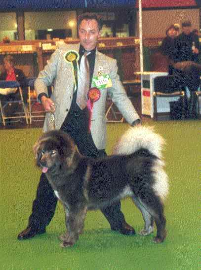 Heronsview Blue Chuba in Sobarna