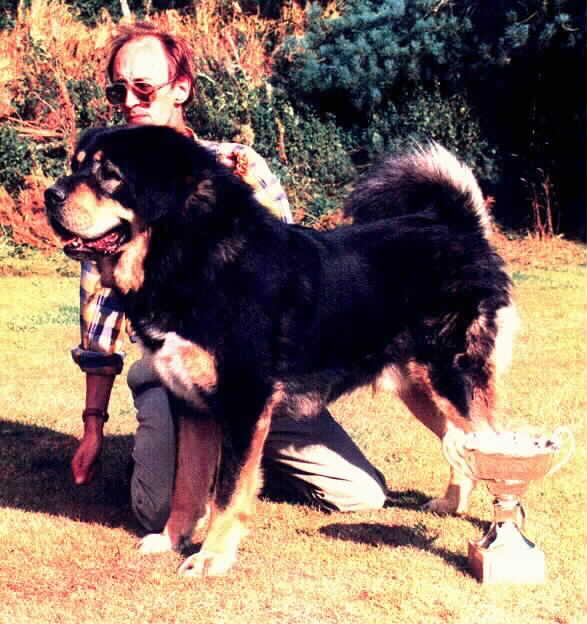 Bernmast Ting Jampa ('Jampa')